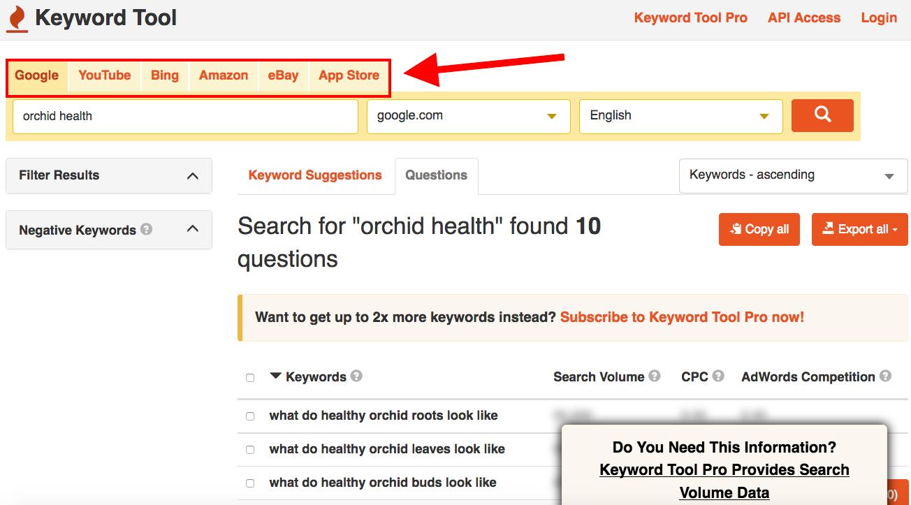 keywordtool.io orchid health search