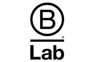 B Lab Google Grant